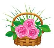 Rosas cor-de-rosa na cesta Fotografia de Stock