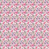 Rosas cor-de-rosa pulverulentos vermelhas botânicas ervais florais da mola bonito bonita maravilhosa sofisticada delicada macia b fotografia de stock