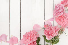 Rosas cor-de-rosa românticas no fundo de madeira branco imagens de stock royalty free
