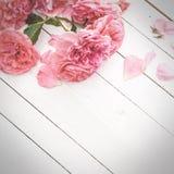 Rosas cor-de-rosa românticas no fundo de madeira branco imagem de stock