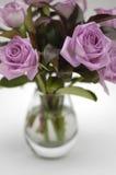 Rosas cor-de-rosa temperamentais no vaso 2 imagens de stock