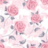 Rosas cor-de-rosa Teste padrão sem emenda floral 19 da aquarela Fotos de Stock Royalty Free