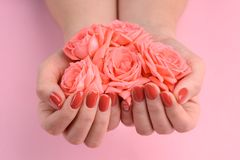 Rosas coralinas y clavos pulidos imagenes de archivo