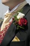 Rosas da casa de botão Imagens de Stock