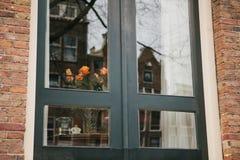 Rosas da Holanda na janela em Amsterdão Reflexão de casas holandesas tradicionais na janela celebration Um feliz Foto de Stock