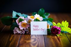 Rosas de florescência bonitas e um cartão para a mãe Imagem de Stock Royalty Free
