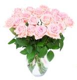 Rosas de florescência cor-de-rosa Fotografia de Stock
