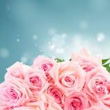 Rosas de florescência cor-de-rosa Imagens de Stock