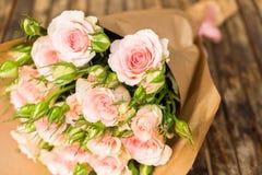 Rosas de florescência da violeta Imagens de Stock Royalty Free