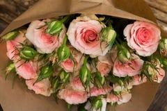 Rosas de florescência da violeta Fotos de Stock