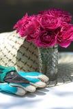Rosas de jardinagem das luvas dos cortadores foto de stock royalty free