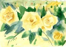 Rosas de la acuarela Foto de archivo libre de regalías