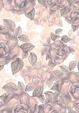 Rosas de la acuarela del vintage Fotografía de archivo libre de regalías