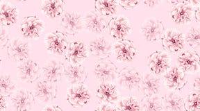 Rosas de la acuarela, modelo incons?til floral fotografía de archivo