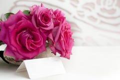 Rosas de la belleza Foto de archivo libre de regalías
