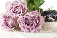 Rosas de la cortina en colores pastel Fotografía de archivo