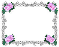 Rosas de la invitación de la boda o del partido Foto de archivo