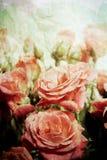 Rosas de la vendimia Imagen de archivo libre de regalías