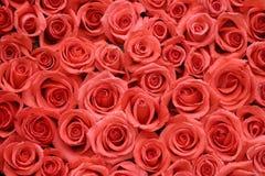 Rosas de Oraqnge pila de discos de lado a lado Imagenes de archivo