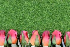 Rosas de seda rojas y forma artificial de la hierba verde una frontera inferior Bueno para el funcionamiento de la raza excelente imagen de archivo libre de regalías