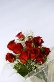 Rosas del amor Imagen de archivo libre de regalías