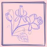 Rosas del azul de la postal stock de ilustración