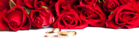 Rosas del día de tarjeta del día de San Valentín y anillos de bodas aislados Imagen de archivo