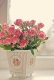 Rosas del escarlata Foto de archivo libre de regalías