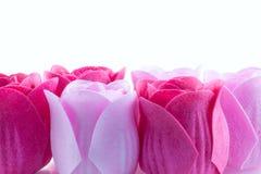 Rosas del jabón foto de archivo
