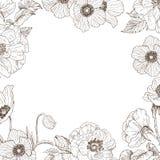 Rosas del jardín y marco blandos de la anémona Ejemplo dibujado mano botánica del vintage Flores de la primavera alrededor del lu Imágenes de archivo libres de regalías