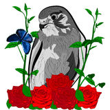 Rosas del pájaro y mariposa azul Imágenes de archivo libres de regalías