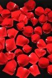 Rosas del romance Imagen de archivo