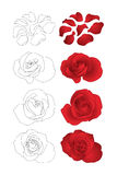 Rosas del vector fijadas Foto de archivo