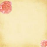 Rosas del vintage stock de ilustración