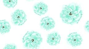 Rosas del vintage, modelo incons?til en colores pastel imagen de archivo