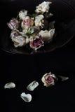 Rosas descoloradas en cuenco Foto de archivo