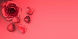 Rosas do dia de são valentim do cartão no amor e no fundo Imagens de Stock Royalty Free