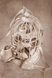 Rosas do estilo do vintage na gaiola do metal Imagens de Stock Royalty Free
