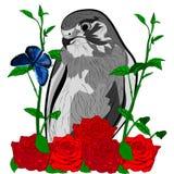 Rosas do pássaro e borboleta azul imagens de stock royalty free