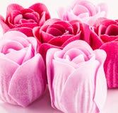 Rosas do sabão Fotografia de Stock Royalty Free