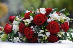 Rosas do vermelho das noivas Foto de Stock
