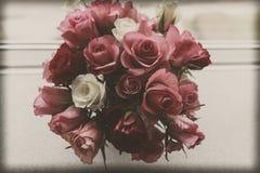 Rosas do vintage Imagens de Stock Royalty Free