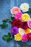 Rosas e alfazema delicadas fotos de stock royalty free
