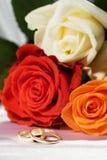 Rosas e anéis Imagem de Stock