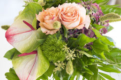 Rosas e antúrio alaranjados imagens de stock