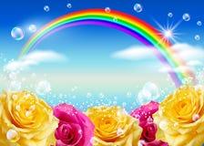 Rosas e arco-íris Fotografia de Stock