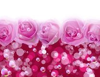 Rosas e bolhas Foto de Stock Royalty Free