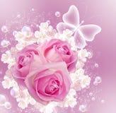 Rosas e bolhas Foto de Stock