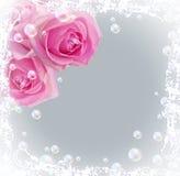 Rosas e bolhas Imagem de Stock