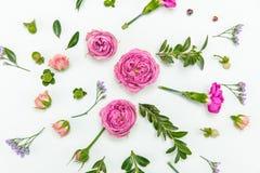 Rosas e botões cor-de-rosa bonitos com as flores e as folhas azuis pequenas do verde Foto de Stock Royalty Free